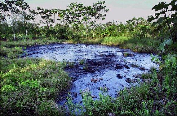 Muestra del estado en que quedó la amazonia ecuatoriana luego que la Texaco decidiera abandonar sus explotaciones petroleras.
